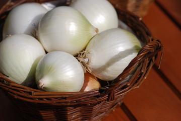Zwiebelernte verschiedene Zwiebeln Allium
