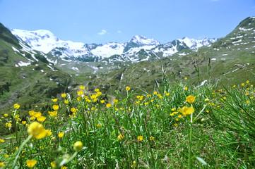 Weißseespitze - Kaunertal - Österreich