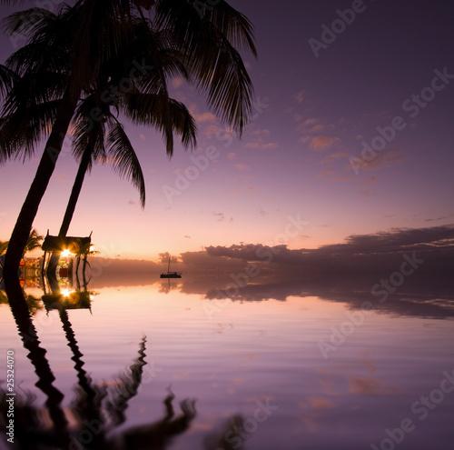 Couch soleil le tropique cocotier mariage c r monie romantique photo libre de droits sur la - Le soleil se couche a quel heure ...