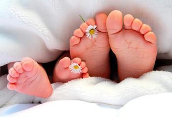 Füße mit Gänseblümchen
