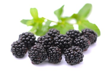Blackberries - More