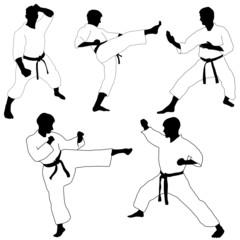 Karate pose-
