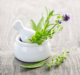 Fototapety Healing herbs in mortar and pestle