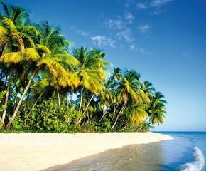 Traumstrand, Insel paradies, Südsee, Karibik