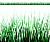a row of abstract curves generating an endless grass texture poster