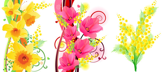 Three beautiful spring floral elements with tulips and mimosa