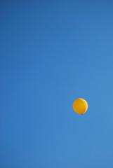 Palloncino in volo 05