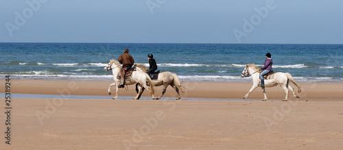 Fotobehang Paardrijden ballade de cheveaux sur la plage