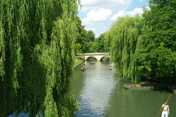 Cambridge - Punting on the River
