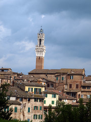 Siena - panorama of the old part of town with Torre del Manga