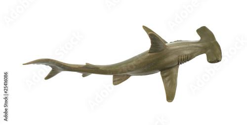 Leinwandbild Motiv Toy hammerhead shark