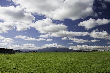 Mt Taranaki Egmont National Park