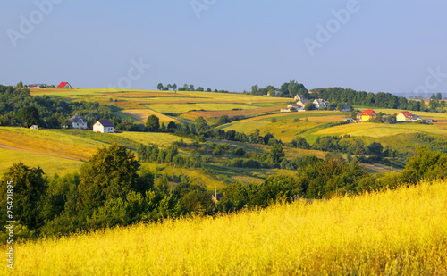 Wavy fields and village