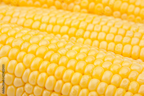 Yellow sweet corn