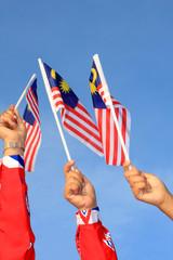 three malaysia flag
