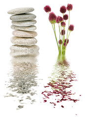 flowers and stones