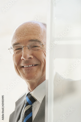 senior businessman, smiling, portrait