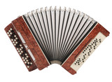 Fototapety Brown bayan (accordion) isolated on white background