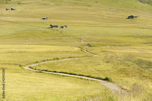 italy, seiseralm, farmhouses in field