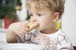 Deutschland, Junge Kleinkind essen Brötchen, Portrait