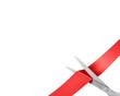 Scissors cut ribbon, large corner version