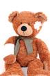Verletzter Teddy