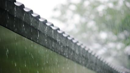 raindrops on roof