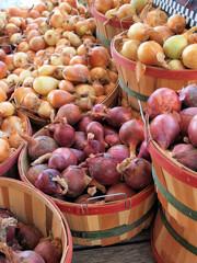 Bushels of fresh picked onions at a roadside market