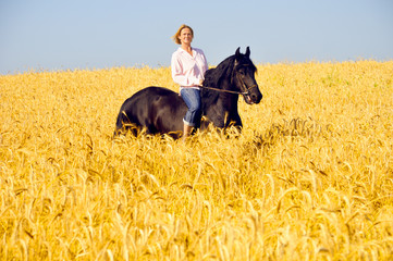 Beautiful woman rides a pretty horse in field