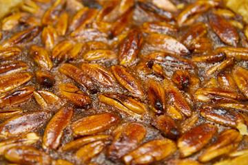Philippine Pili nut dessert pie