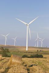 energia e agricoltura