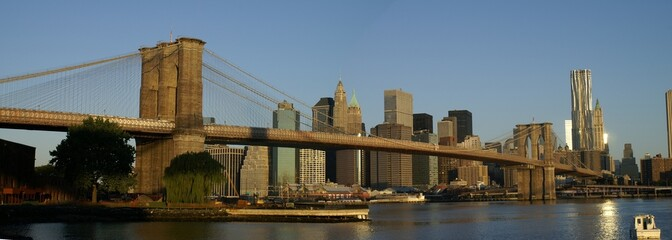 alba Newyorkese