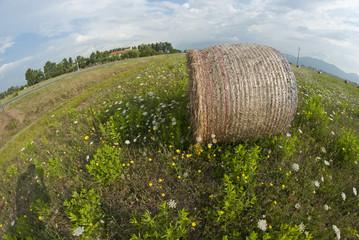 Haybale, Tuscany