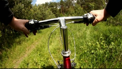 Riding a mountain bicycle in a forest