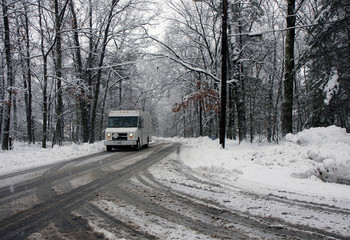 Truck on a road in a snowy forest