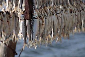 pesce essiccato