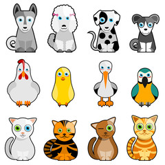 cat, dog, bird cartoon character