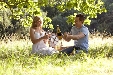 A young couple having a picnic, man opening a bottle of wine