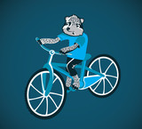 cartoon racoon riding bicycle