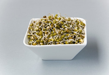 green gram sprouts against light grey background