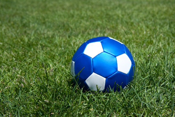 a blue leather football on a green lawn
