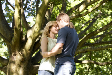 A young couple standing beneath a tree, embracing