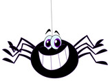 Fototapety Spider