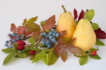 Obst Blumen Blätter-Stilleben 364