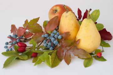Obst Blumen Blätter-Stilleben 365