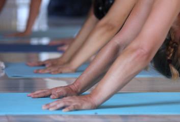 Yoga arms