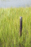 Wetland Conservation with Fence Pole poster