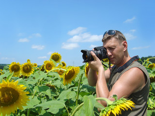 Photographer in the field of sunflowers in a sunny day