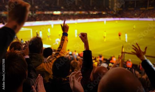 Football Excitement