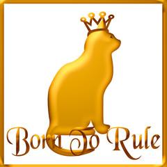 cat's rule